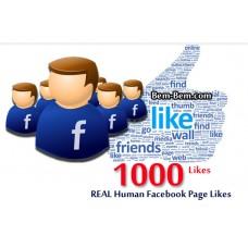 1000 FaceBook Rea Likes
