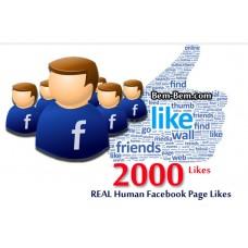 2000 FaceBook Rea Likes