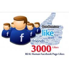 3000 FaceBook Rea Likes