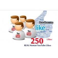 250 Youtube Real Likes