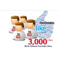 3000 Youtube Real Likes